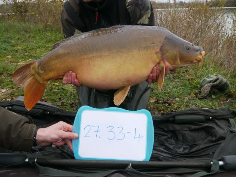 Fish 143 - Stocked at 33lb 4oz