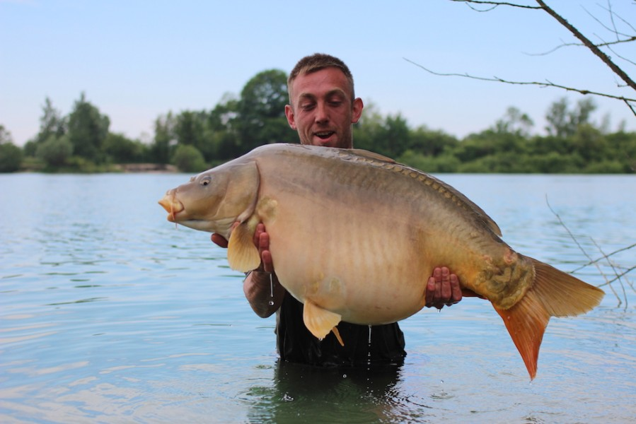 Rose Bud at 45lb from Birches