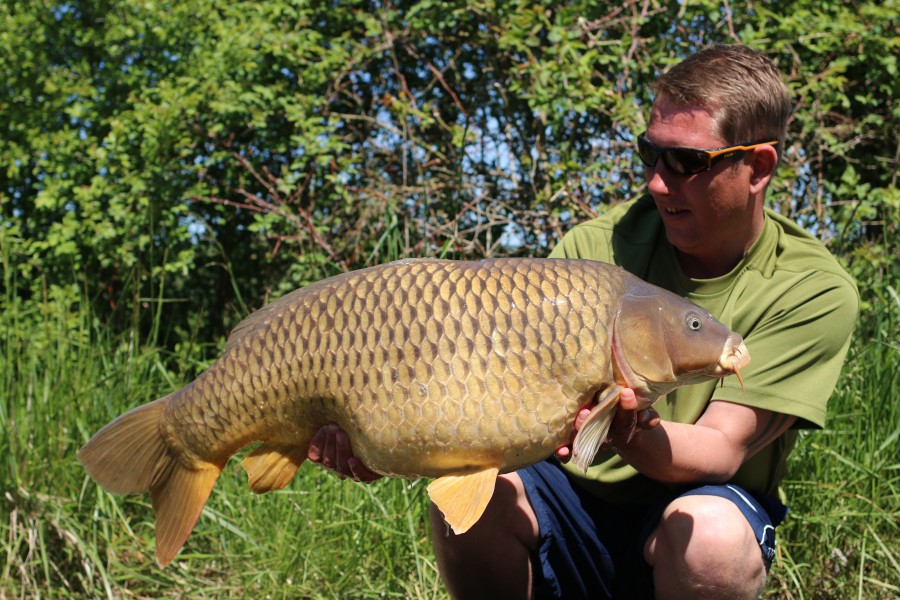 Shane Farrelly, 28lb 4oz, Shingles, 11/05/19