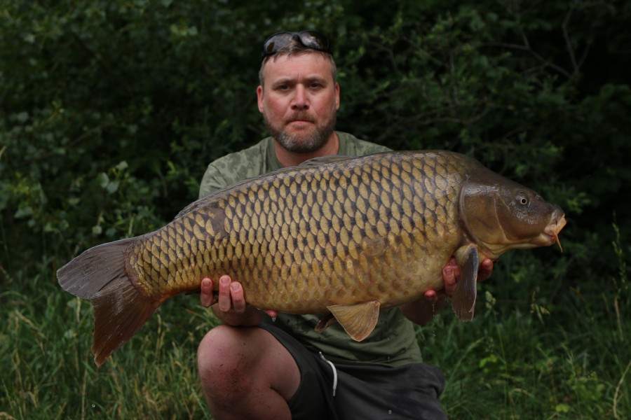 James Newton, 31lb, Tea Party, 15/06/19