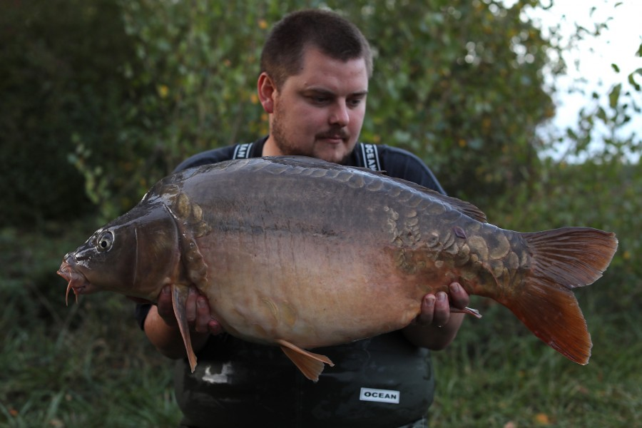 Michael O'Regan, 29lb 4oz, Turtles Corner, 28/09/19