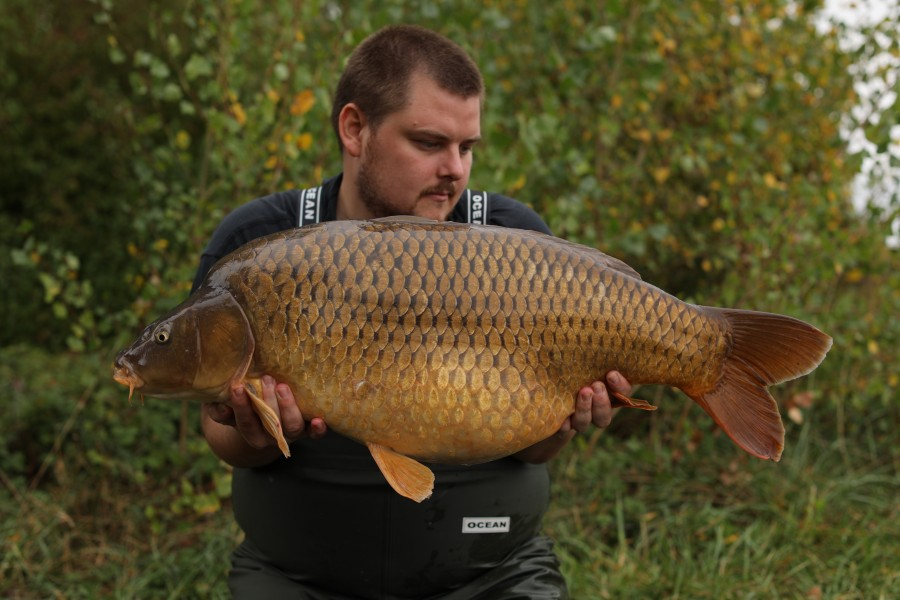 Michael O'Regan, 33lb 12oz, Turtles Corner, 28/09/19