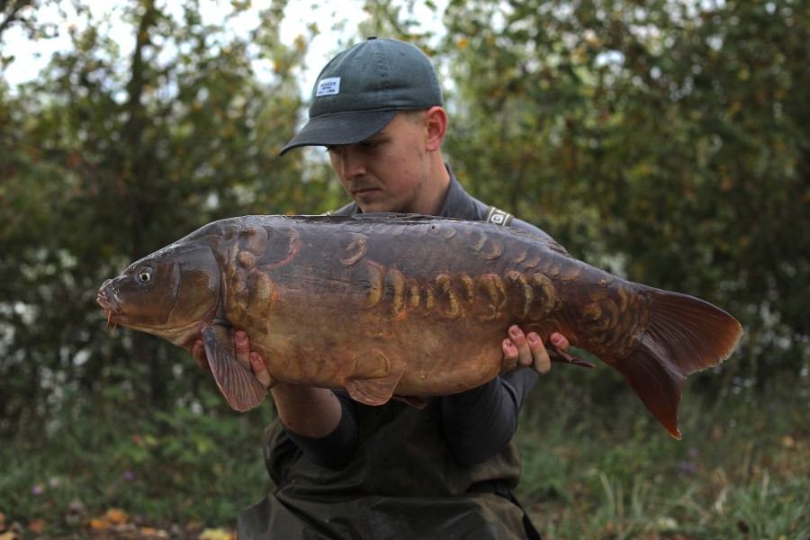 Matt Hammond, 23lb 12oz, Tea Party, 28/09/2019