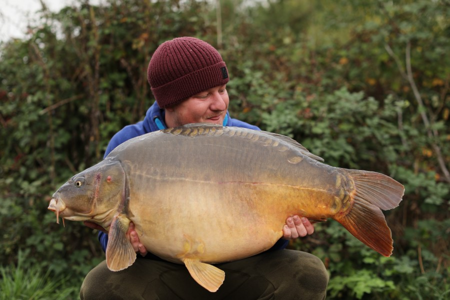 Steve Bartlett, 41lb 8oz, Shingles, 28/09/2019