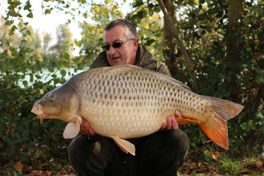 "The new 40lb Common ""Leslie"" at 42lb........."